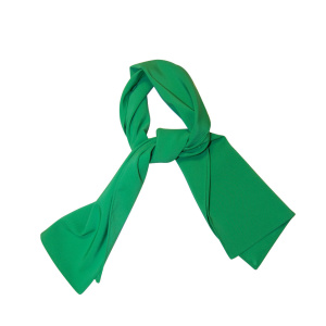 Pañuelo Verde Congresos Y Ferias, Modelo Largo