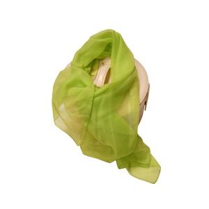 Pañuelo Verde Claro Tipo Foulard